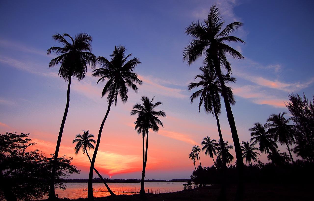 Шри-Ланка, туры, скидки